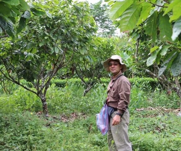 Sara Ana_Naoki en cultivo de cacao_20171112